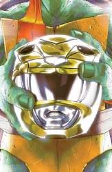 Power Rangers Teenage Mutant Ninja Turtles #2 Cvr D Montes (