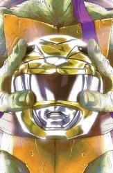 Power Rangers Teenage Mutant Ninja Turtles #2 Cvr E Montes (