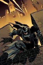Batman Dark Knight #1 1:25 Federici Card Stock Var