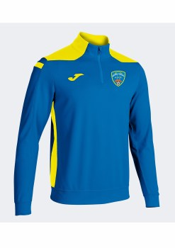 Joma Moneypoint AFC Half Zip (Royal Yellow) 6