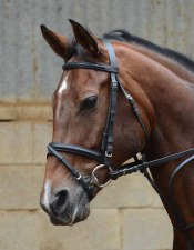 Equisential Leather Bridle & Rein (Black) Cob