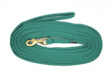 Equisential Lunge Rope (Green) 24'