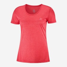 Salomon Agile Womens SS Tee (Coral) Large