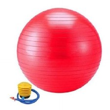 Vector X Gym Ball (Red) 55cm