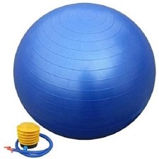 Vector X Gym Ball (Blue) 65cm