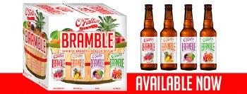 OFallon BRAMBLE Kolsch Style Variety 12pk 12oz Bottles
