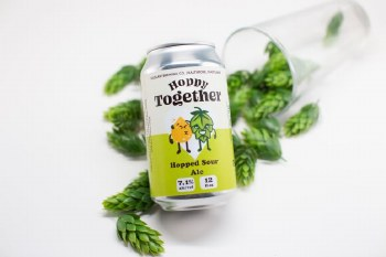 Duclaw Hoppy Together Hopped Sour Ale 6pk 12oz Cans