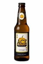 Ace Pumpkin Craft CIder 12oz Bottle