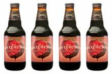 Founders Big Luscious Chocolate & Raspberries Stout 4pk 12oz Bottles