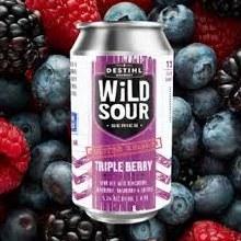 Destihl Wild Sour Series Triple Berry Ale 4pk 12oz Cans