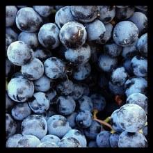 Washington Winery Sweet Blueberry Wine 750ml