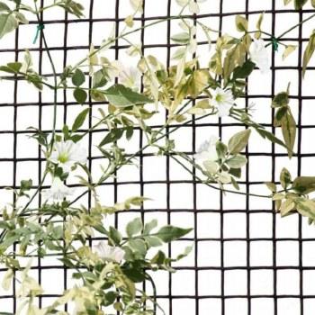 Climbing Plant & Fencing Mesh 20mm, 0.5 x 5m Brown