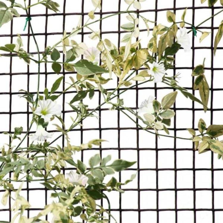 Climbing Plant Fencing Mesh 20mm 1 X 5m Green Clarkes