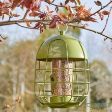 Acorn Squirrel Proof Seed Birds Feeder