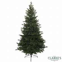 Green Oxford Christmas 8ft Tree