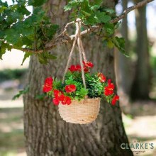 Hanging Basket Bouquet Red
