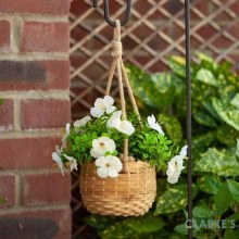 Hanging Basket Bouquet White