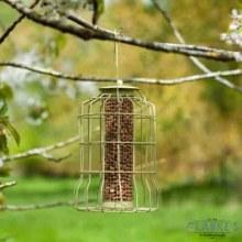 Original Squirrel Proof Peanut Birds Feeder