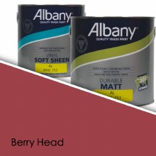 Albany Soft Sheen Berry Head Colour Sheet