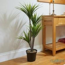 Dragon Tree - Faux Indoor Plant 105cm