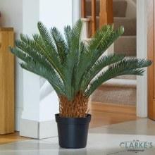 Sago Palm - Faux Indoor Plant 68cm