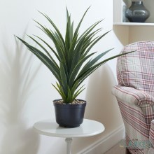 Spiky Sisal - Faux Indoor Plant 62cm