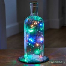 Bottle it! 12 LED Multi Colour Light