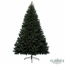 Canada Spruce Christmas Tree 8ft