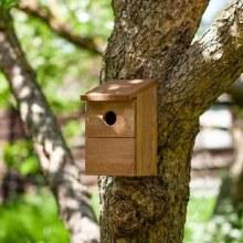 Classic Nest Box