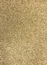Carpet Dublin Twist Berber