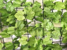 Emerald Artficial Hedge  3x1m