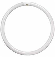 Eveready T9 60W Circular Bulb