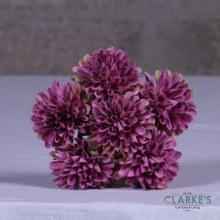 Flower Posy Flowers Purple