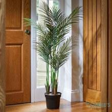 Pheonix Palm - Faux Indoor Plant 124cm