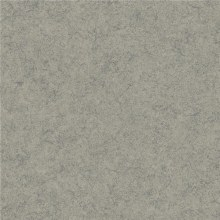 Vinyl Flooring Elite Blue