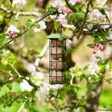 Twist Top Suet Ball Feeder 20cm