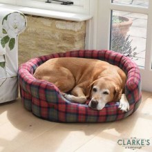 Check Oval Dog Bed Large