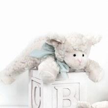 BEAR BABY BAA