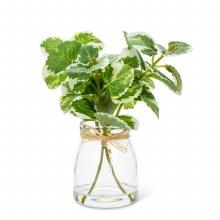 Variegated Greenery Vase