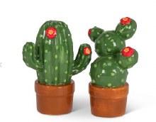 Cactus S&P set