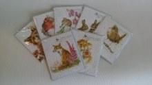 Enclosure Cards Asstd