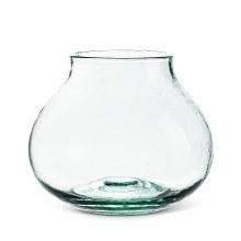 Bulb Vase Terrarium