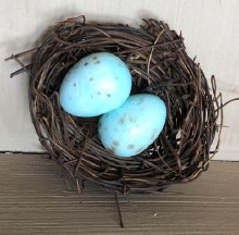 Mini Birdnest with Egg
