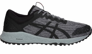 Alpine XT Grey/Black 10