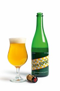 Dupont Saison Belg Ale 750mlml