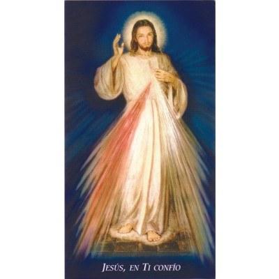 SPANISH CHAPLET OF DIVINE MERCY PAPER PRAYERCARD