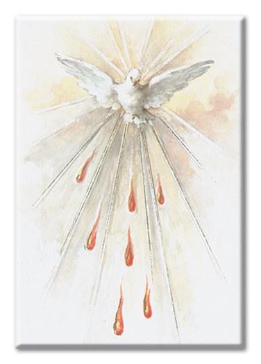 HOLY SPIRIT MAGNET