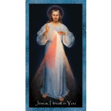 NURSES CHAPLET DIVINE MERCY EMERGENCY PRAYERCARD