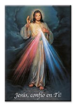 DIVINE MERCY SPANISH MAGNET