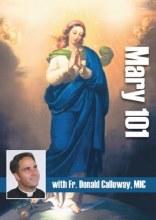 MARY 101 DVD